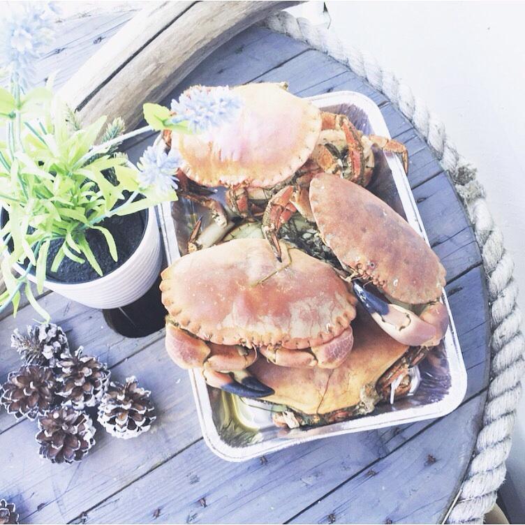 Krabbe har vi også fått smakt, har så snille naboer som hadde fått for mange krabber 😉